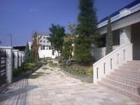 Dcf_0042